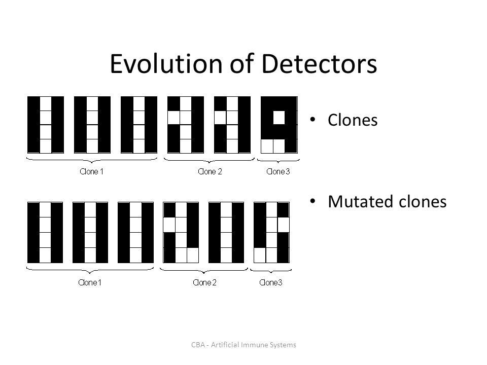 CBA - Artificial Immune Systems Evolution of Detectors Clones Mutated clones