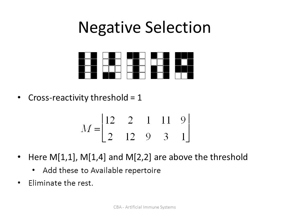 CBA - Artificial Immune Systems Negative Selection Cross-reactivity threshold = 1 Here M[1,1], M[1,4] and M[2,2] are above the threshold Add these to Available repertoire Eliminate the rest.