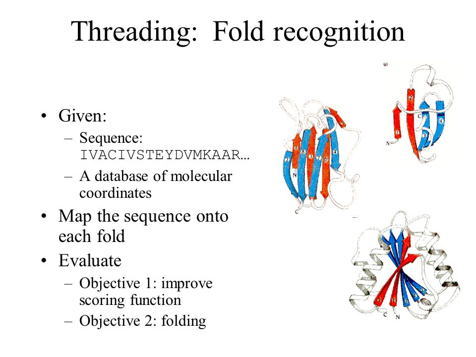 Threading: Fold recognition Given: –Sequence: IVACIVSTEYDVMKAAR… –A database of molecular coordinates Map the sequence onto each fold Evaluate –Objective 1: improve scoring function –Objective 2: folding