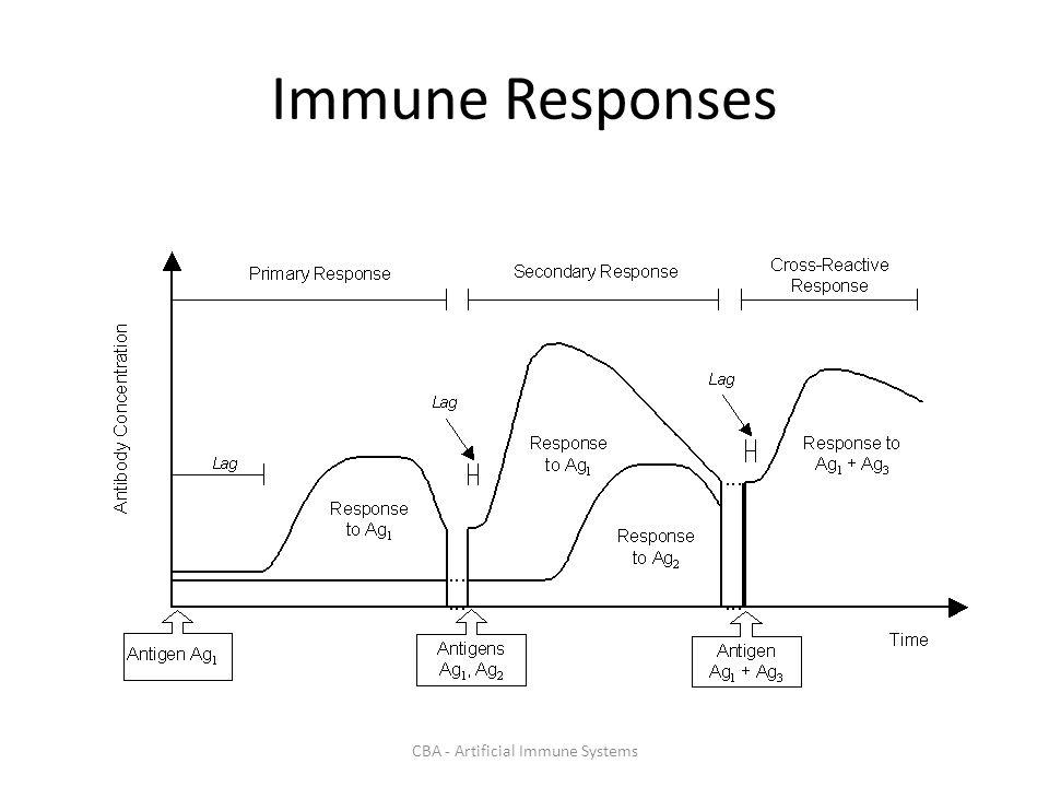 CBA - Artificial Immune Systems Immune Responses