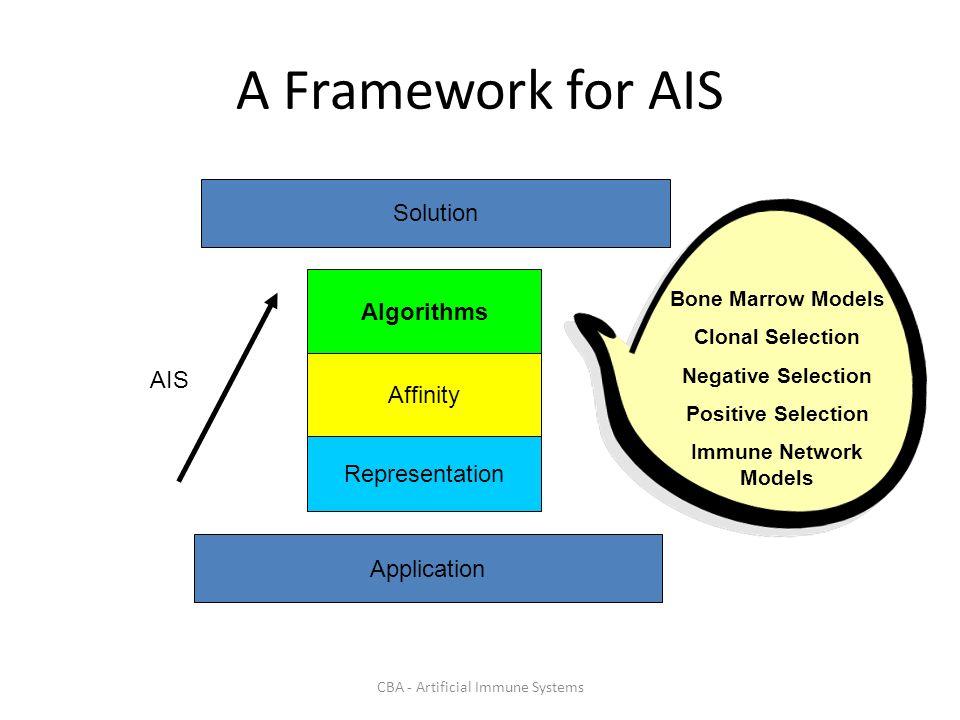 CBA - Artificial Immune Systems A Framework for AIS Algorithms Affinity Representation Application Solution AIS Bone Marrow Models Clonal Selection Negative Selection Positive Selection Immune Network Models