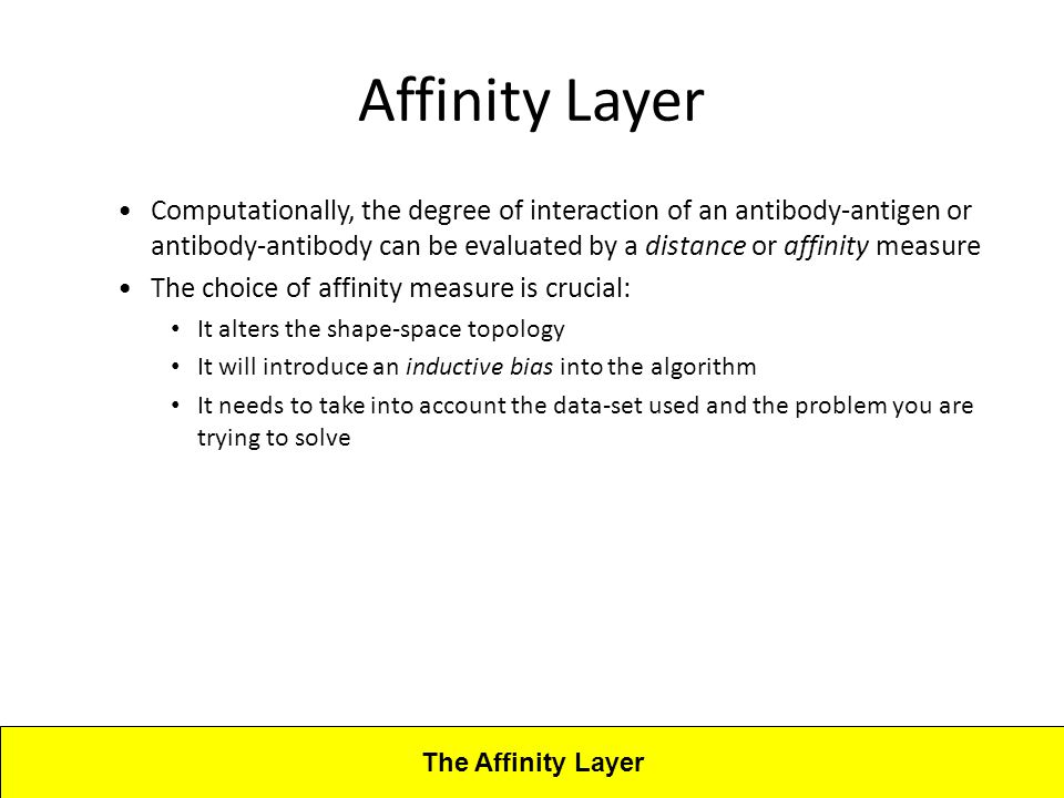 Lecture 4CBA - Artificial Immune Systems Affinity Layer Computationally, the degree of interaction of an antibody-antigen or antibody-antibody can be evaluated by a distance or affinity measure The choice of affinity measure is crucial: It alters the shape-space topology It will introduce an inductive bias into the algorithm It needs to take into account the data-set used and the problem you are trying to solve The Affinity Layer