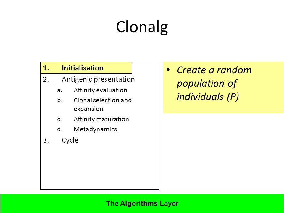 Lecture 4CBA - Artificial Immune Systems 1.Initialisation 2.Antigenic presentation a.Affinity evaluation b.Clonal selection and expansion c.Affinity maturation d.Metadynamics 3.Cycle Clonalg Create a random population of individuals (P) The Algorithms Layer