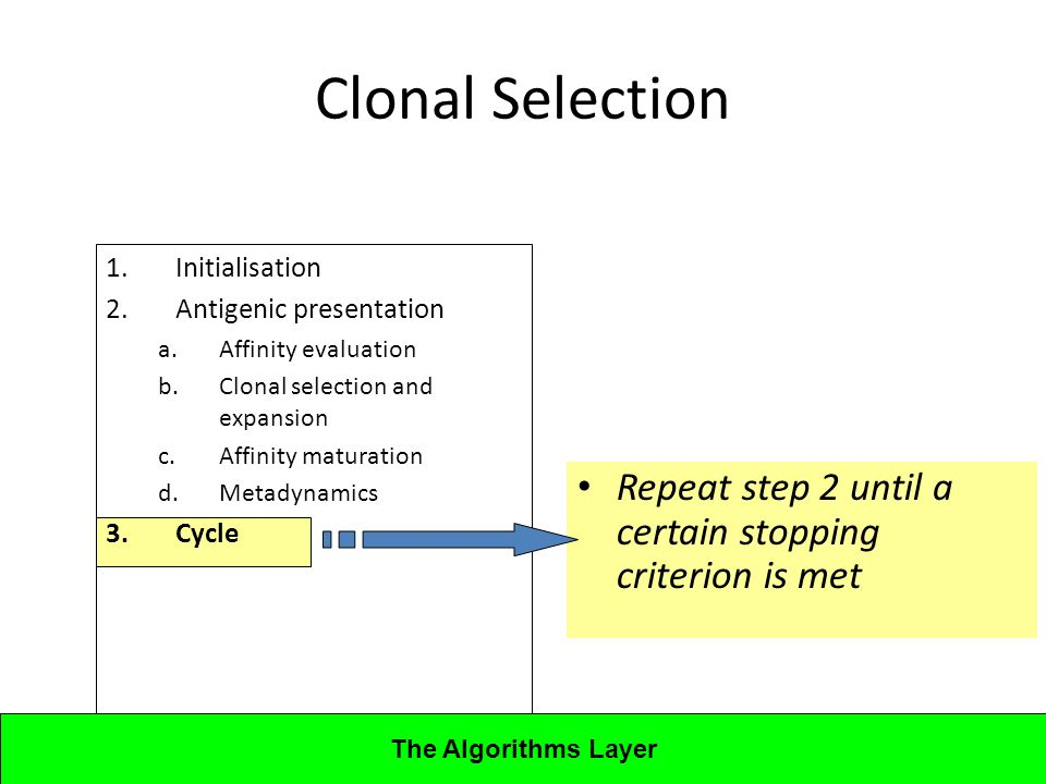 Lecture 4CBA - Artificial Immune Systems 1.Initialisation 2.Antigenic presentation a.Affinity evaluation b.Clonal selection and expansion c.Affinity maturation d.Metadynamics 3.Cycle Clonal Selection Repeat step 2 until a certain stopping criterion is met The Algorithms Layer