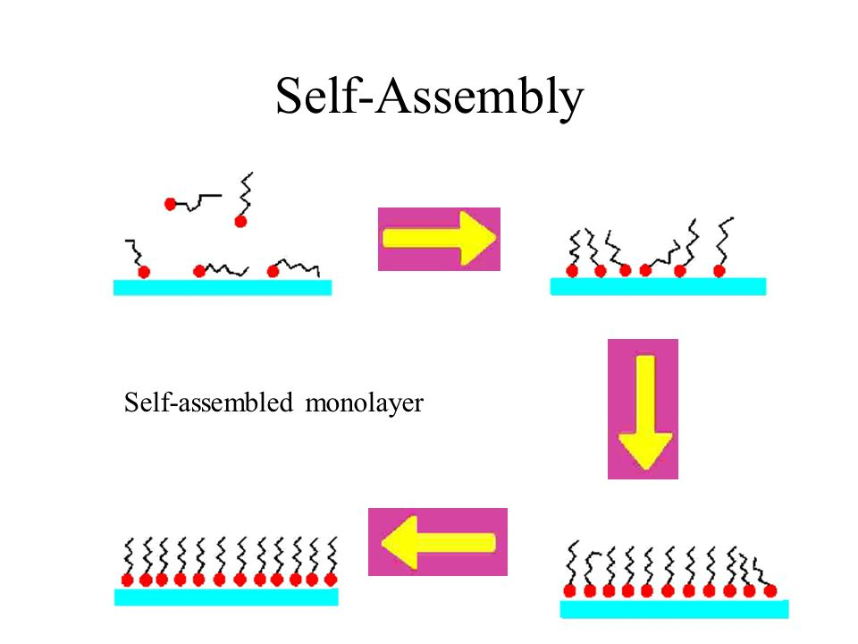 Self-Assembly Self-assembled monolayer