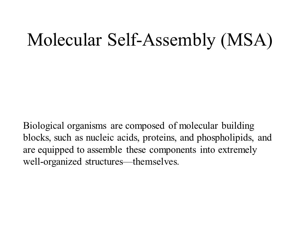 Molecular Self-Assembly (MSA) Biological organisms are composed of molecular building blocks, such as nucleic acids, proteins, and phospholipids, and