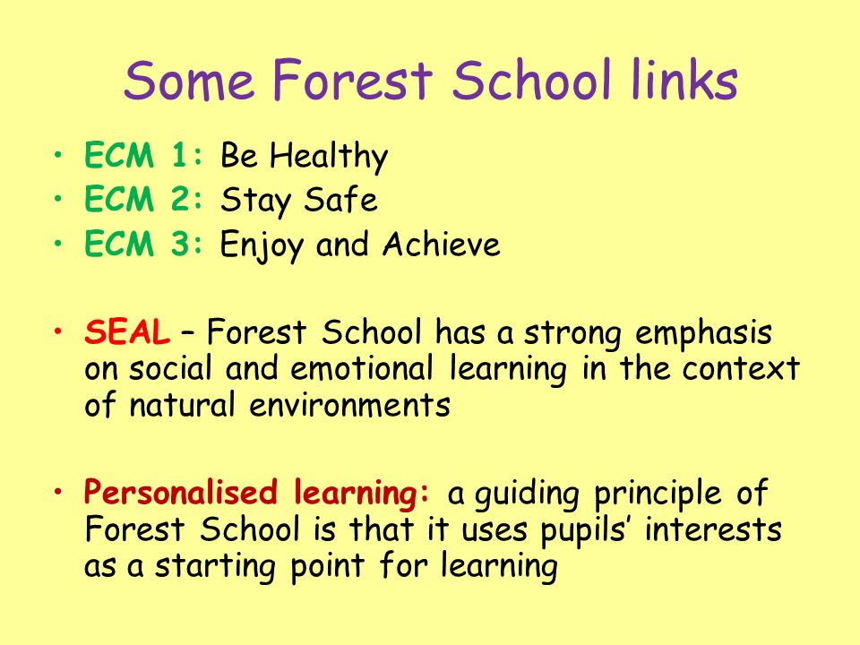 Some Forest School links ECM 1: Be Healthy ECM 2: Stay Safe ECM 3: Enjoy and Achieve SEAL – Forest School has a strong emphasis on social and emotional learning in the context of natural environments Personalised learning: a guiding principle of Forest School is that it uses pupils interests as a starting point for learning
