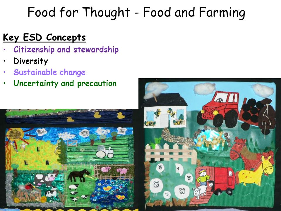 Food for Thought - Food and Farming Key ESD Concepts Citizenship and stewardship Diversity Sustainable change Uncertainty and precaution