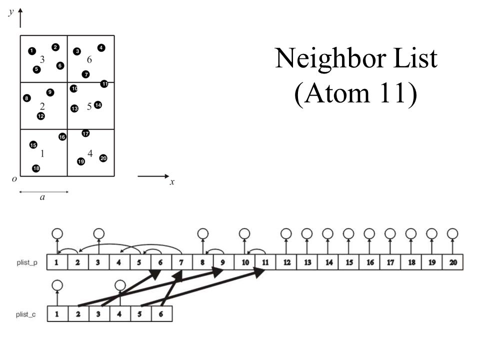 Neighbor List (Atom 11)