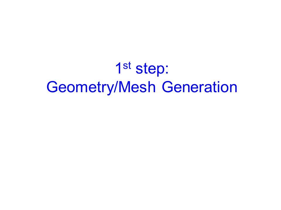 1 st step: Geometry/Mesh Generation