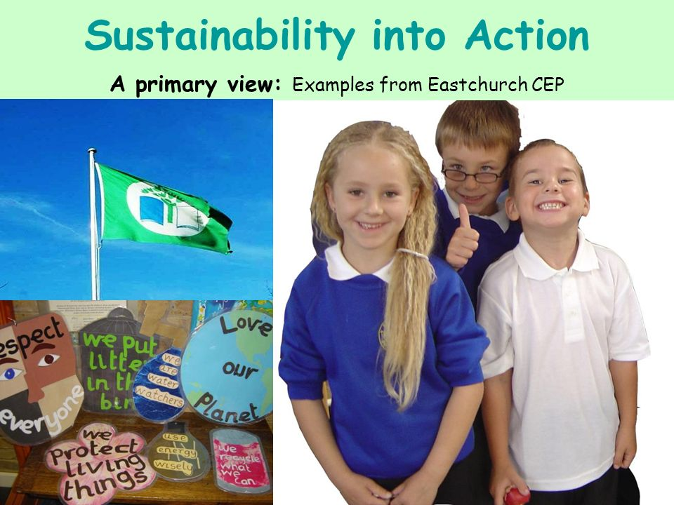 Sustainability into Action A primary view: Examples from Eastchurch CEP
