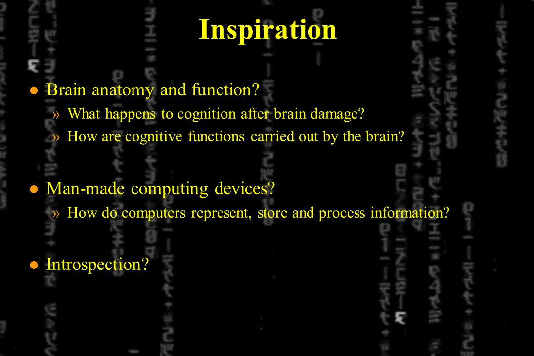 Inspiration l Brain anatomy and function? »What happens to cognition after brain damage? »How are cognitive functions carried out by the brain? l Man-