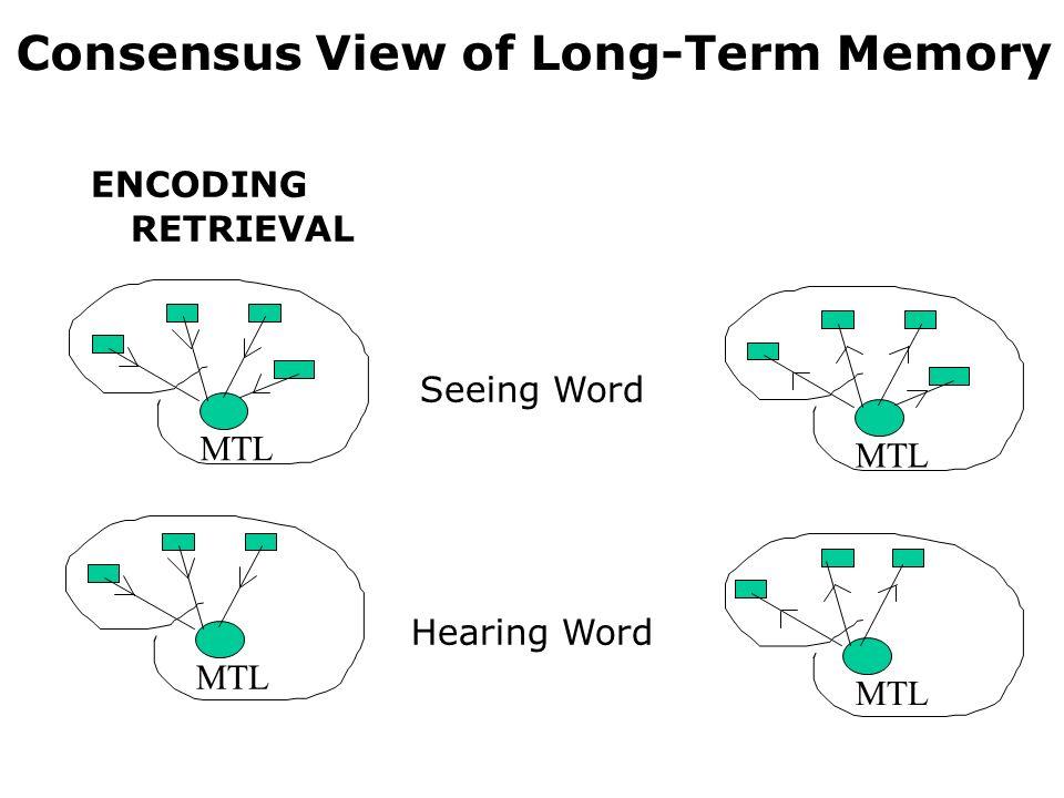 Consensus View of Long-Term Memory ENCODING RETRIEVAL Seeing Word Hearing Word MTL