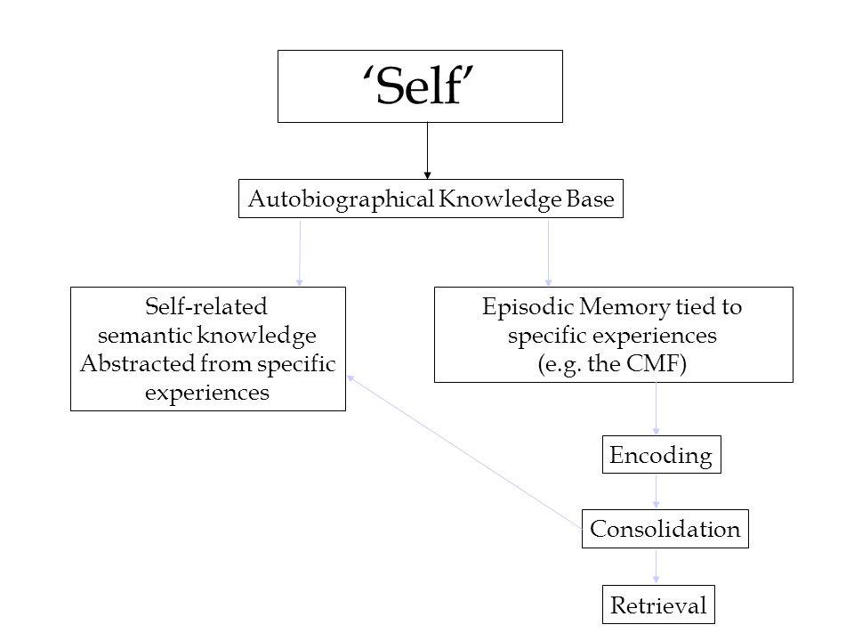 ERP correlates of retrieval from long-term memory