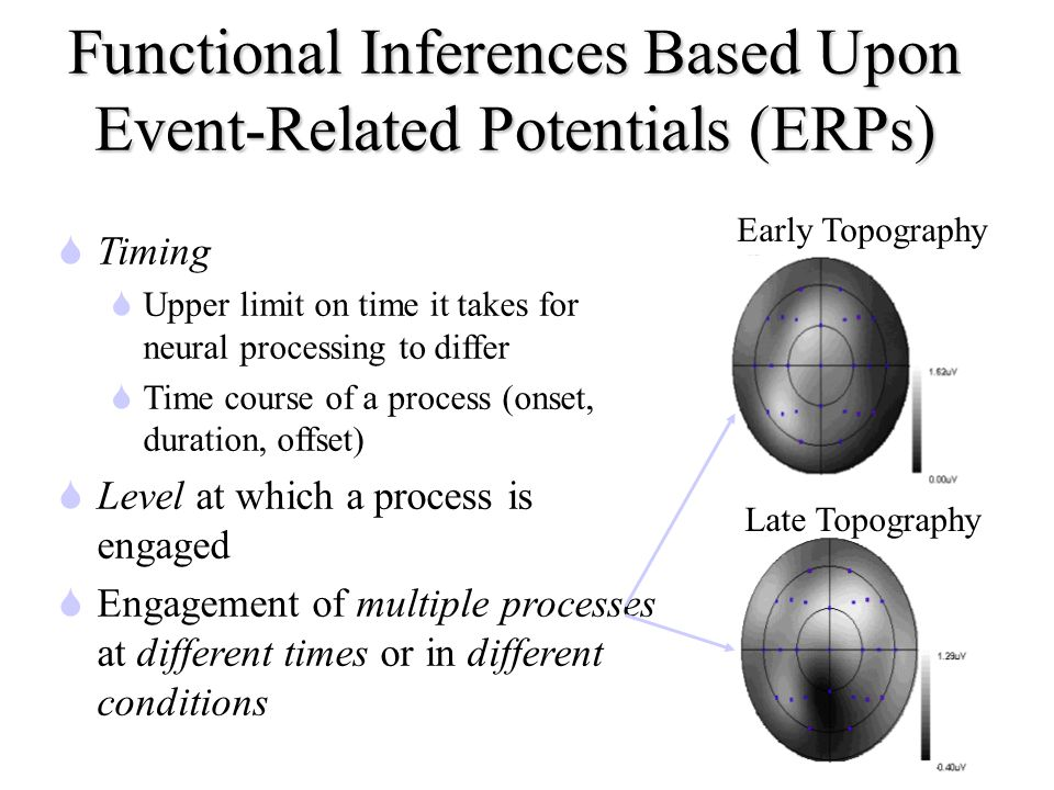 Functional Inferences Based Upon Event-Related Potentials (ERPs) STiming SUpper limit on time it takes for neural processing to differ STime course of a process (onset, duration, offset) SLevel at which a process is engaged SEngagement of multiple processes at different times or in different conditions Early Topography Late Topography