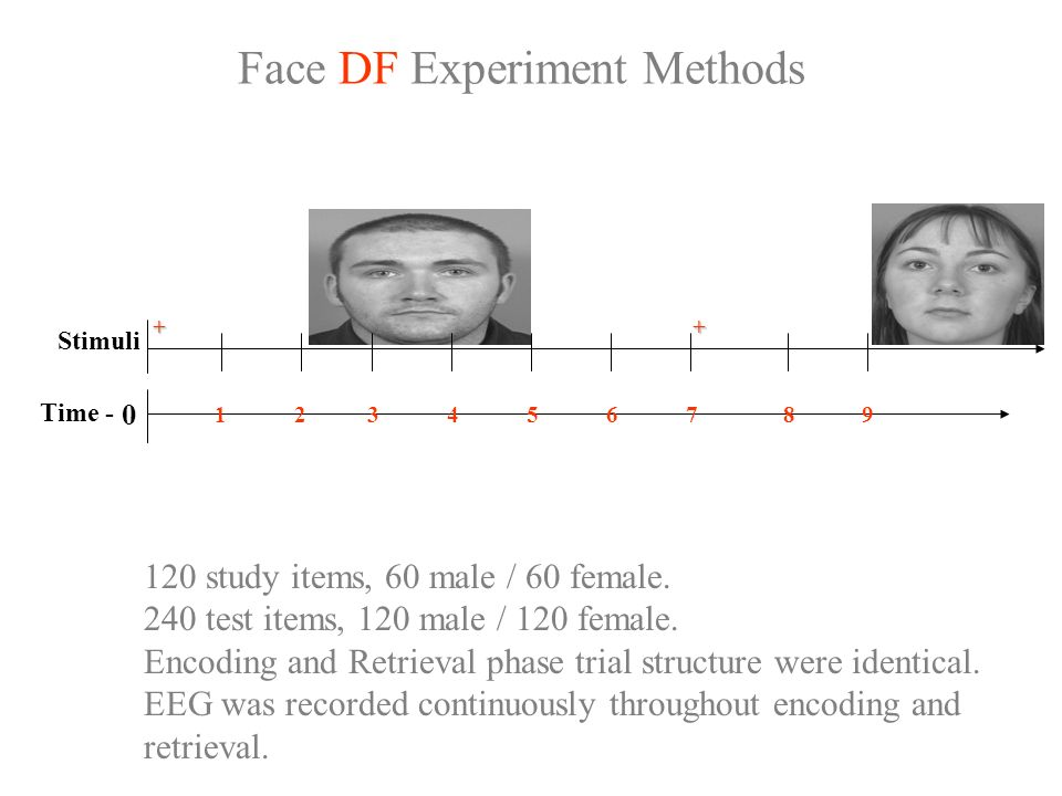 Face DF Experiment Methods Stimuli ++ 0 Time - 134657928 120 study items, 60 male / 60 female.
