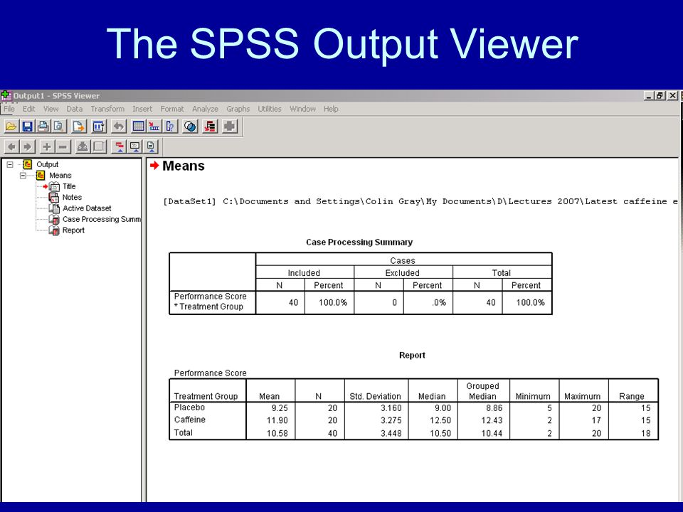 34 The SPSS Output Viewer