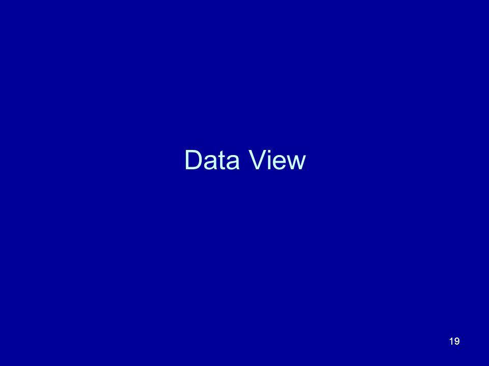 19 Data View