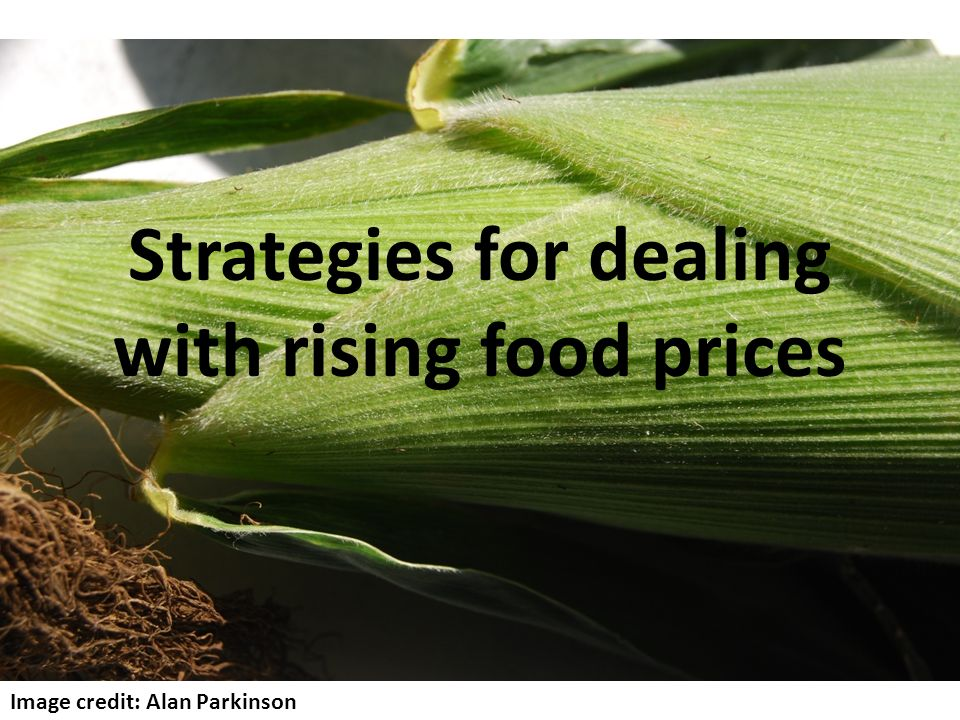 Strategies for dealing with rising food prices Image credit: Alan Parkinson
