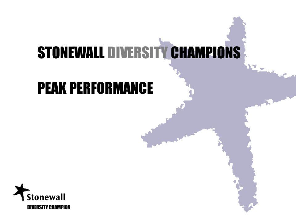 STONEWALL DIVERSITY CHAMPIONS PEAK PERFORMANCE