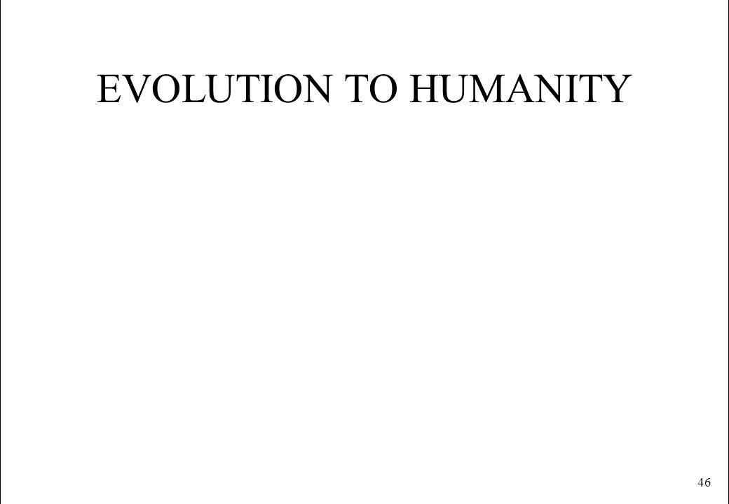 46 EVOLUTION TO HUMANITY