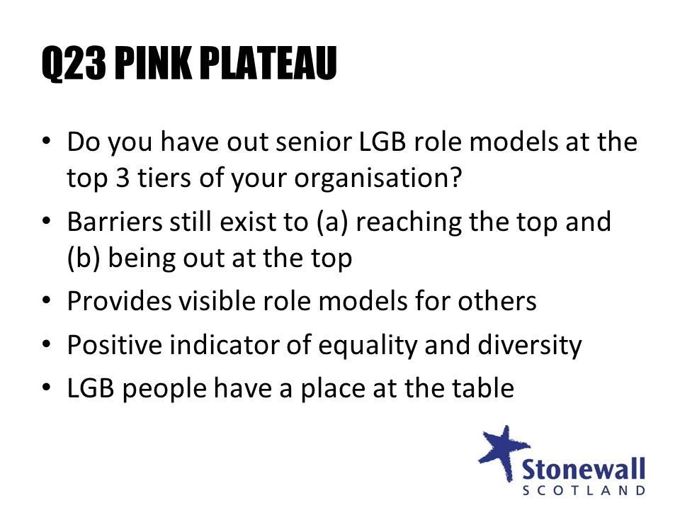 Q23 PINK PLATEAU Do you have out senior LGB role models at the top 3 tiers of your organisation.