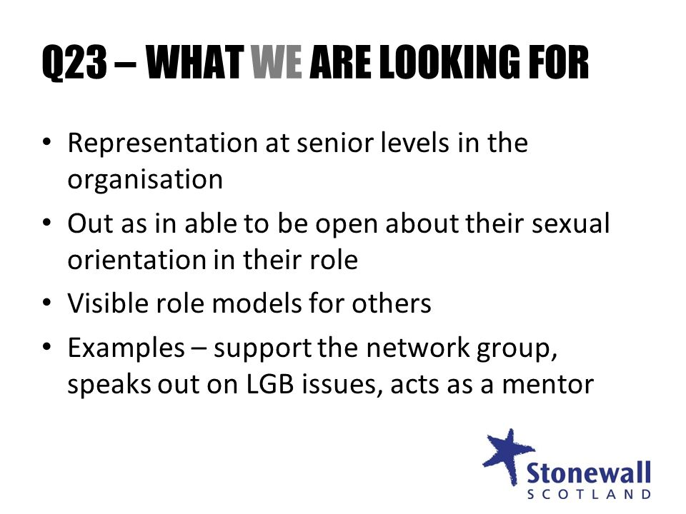 Q23 – WHAT WE ARE LOOKING FOR Representation at senior levels in the organisation Out as in able to be open about their sexual orientation in their role Visible role models for others Examples – support the network group, speaks out on LGB issues, acts as a mentor