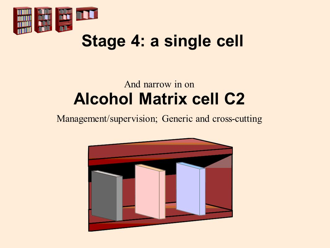 And narrow in on Alcohol Matrix cell C2 Management/supervision; Generic and cross-cutting Stage 4: a single cell
