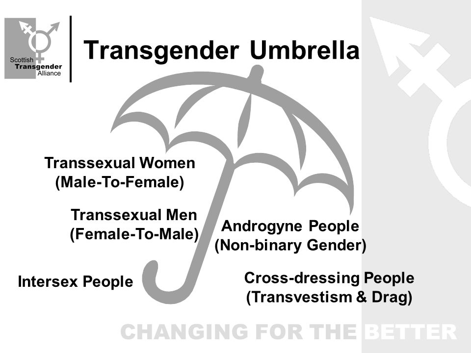 CHANGING FOR THE BETTER Transgender Umbrella Transsexual Women (Male-To-Female) Transsexual Men (Female-To-Male) Intersex People Cross-dressing People (Transvestism & Drag) Androgyne People (Non-binary Gender)