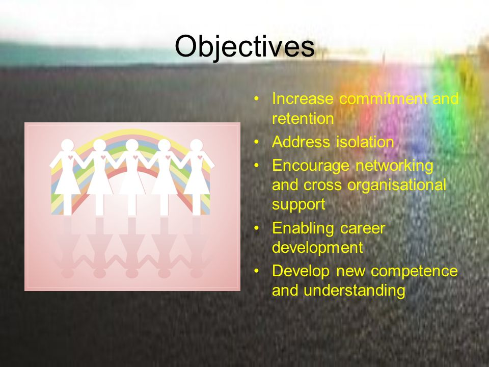 Objectives Increase commitment and retention Address isolation Encourage networking and cross organisational support Enabling career development Develop new competence and understanding