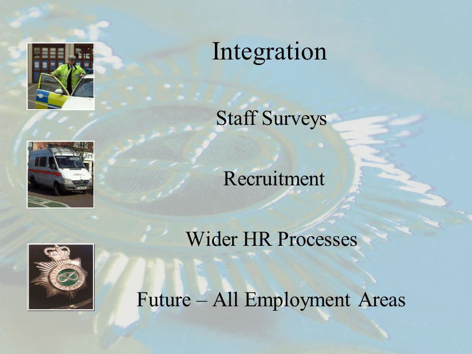 Integration Staff Surveys Recruitment Wider HR Processes Future – All Employment Areas