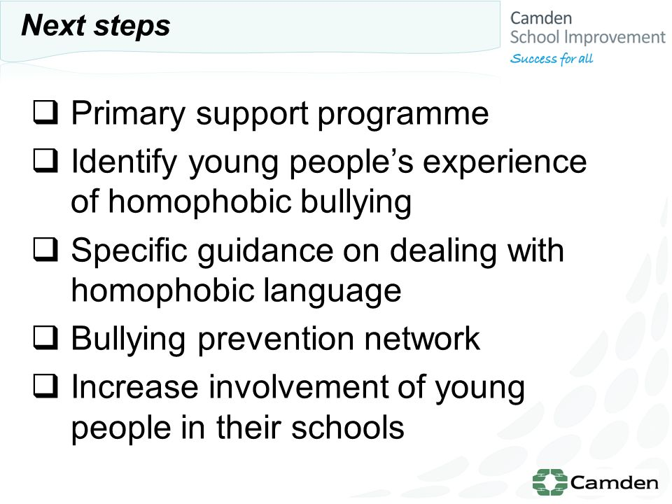 Primary support programme Identify young peoples experience of homophobic bullying Specific guidance on dealing with homophobic language Bullying prevention network Increase involvement of young people in their schools Next steps