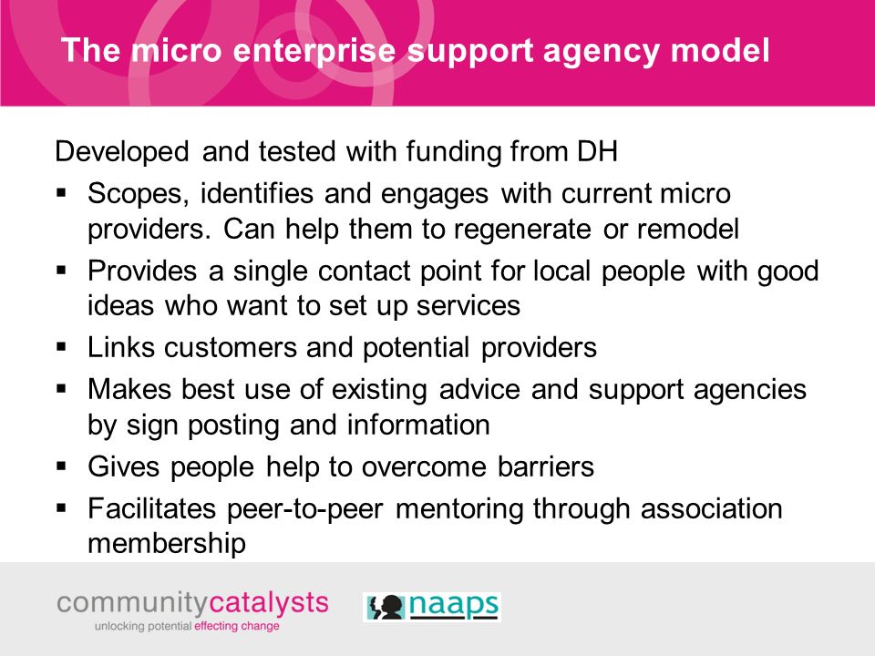 The micro enterprise support agency model Developed and tested with funding from DH Scopes, identifies and engages with current micro providers. Can h