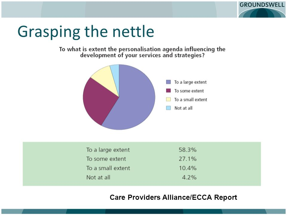 Grasping the nettle Care Providers Alliance/ECCA Report