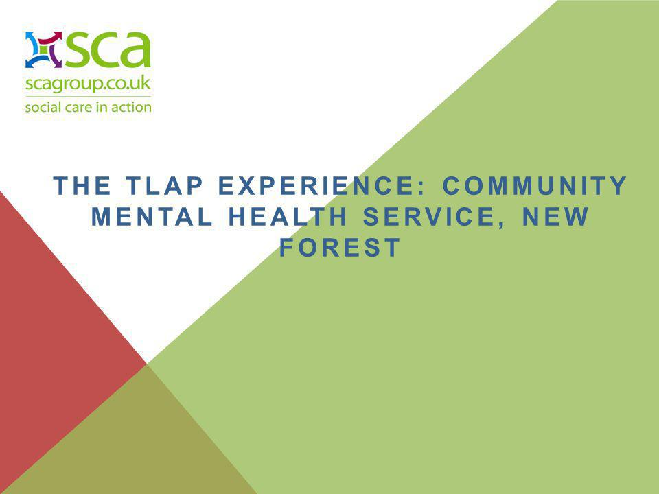 THE TLAP EXPERIENCE: COMMUNITY MENTAL HEALTH SERVICE, NEW FOREST