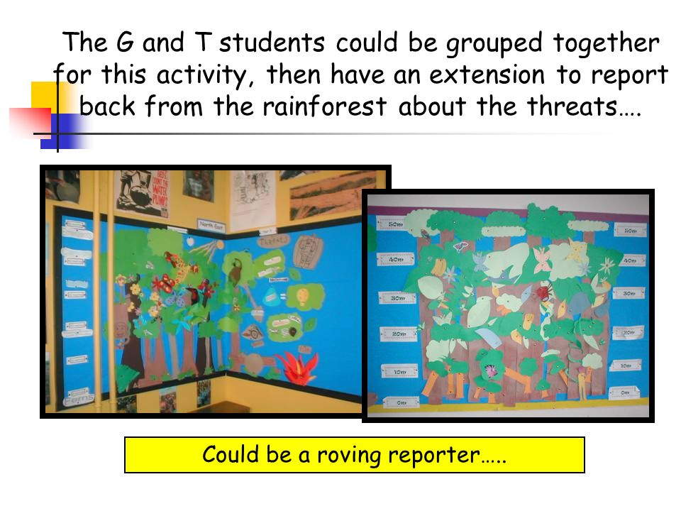 The G and T students could be grouped together for this activity, then have an extension to report back from the rainforest about the threats…. Could