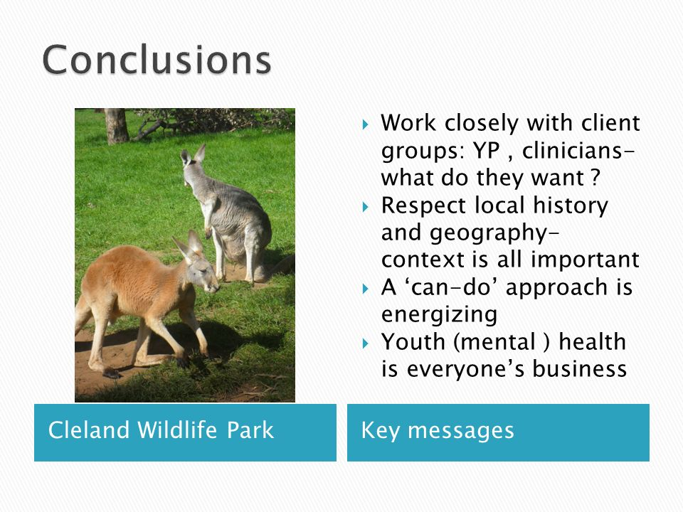 Cleland Wildlife ParkKey messages Work closely with client groups: YP, clinicians- what do they want .