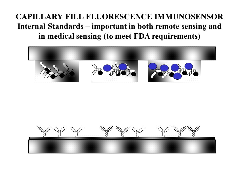 CAPILLARY FILL FLUORESCENCE IMMUNOSENSOR Internal Standards – important in both remote sensing and in medical sensing (to meet FDA requirements)