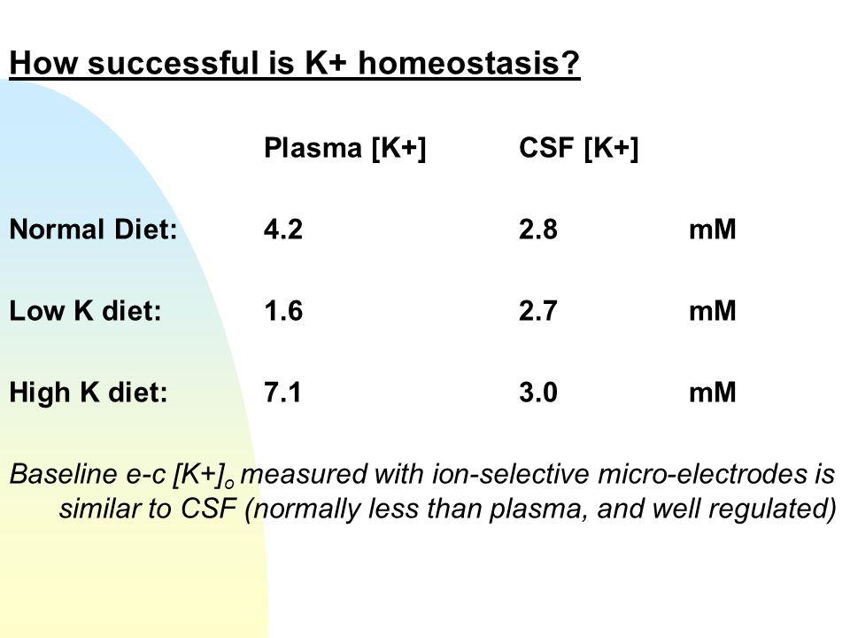 How successful is K+ homeostasis? Plasma [K+]CSF [K+] Normal Diet:4.22.8mM Low K diet:1.62.7mM High K diet:7.13.0mM Baseline e-c [K+] o measured with