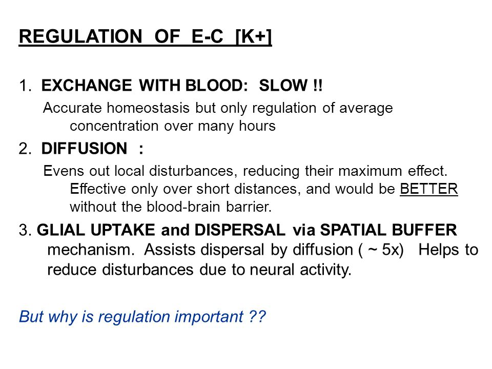 REGULATION OF E-C [K+] 1. EXCHANGE WITH BLOOD: SLOW !! Accurate homeostasis but only regulation of average concentration over many hours 2. DIFFUSION