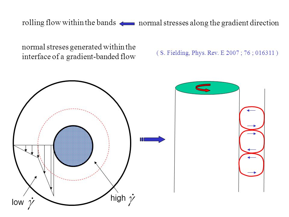 low high rolling flow within the bands normal stresses along the gradient direction normal streses generated within the interface of a gradient-banded flow ( S.