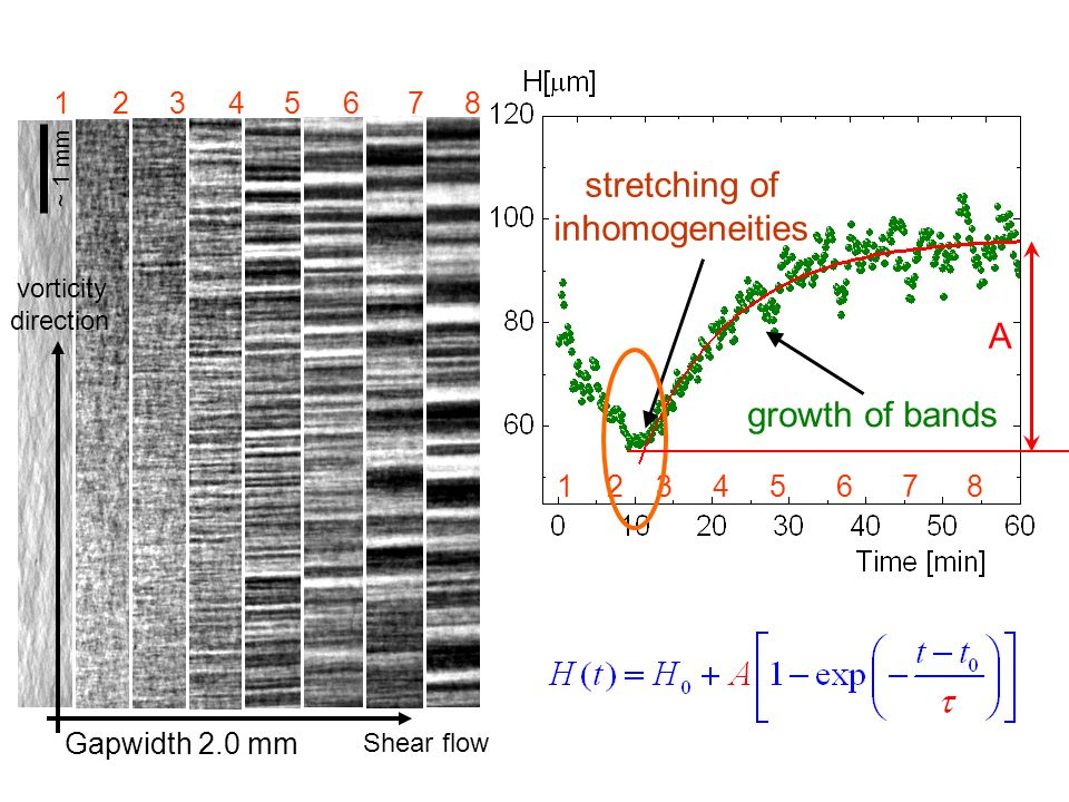 12 3 4 5 6 7 8 1 2 3 4 5 6 7 8 stretching of inhomogeneities growth of bands Shear flow vorticity direction Gapwidth 2.0 mm ~ 1 mm A
