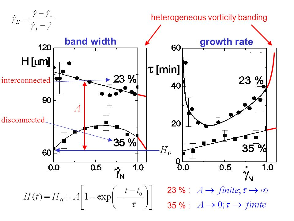 band width growth rate 23 % : 35 % : heterogeneous vorticity banding interconnected disconnected