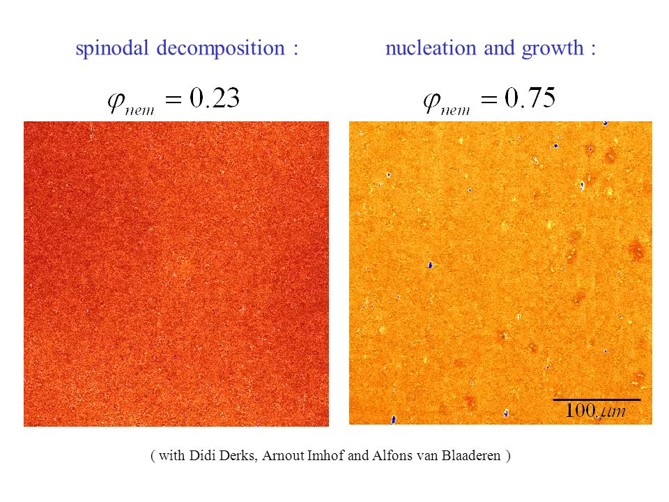 spinodal decomposition : nucleation and growth : ( with Didi Derks, Arnout Imhof and Alfons van Blaaderen )