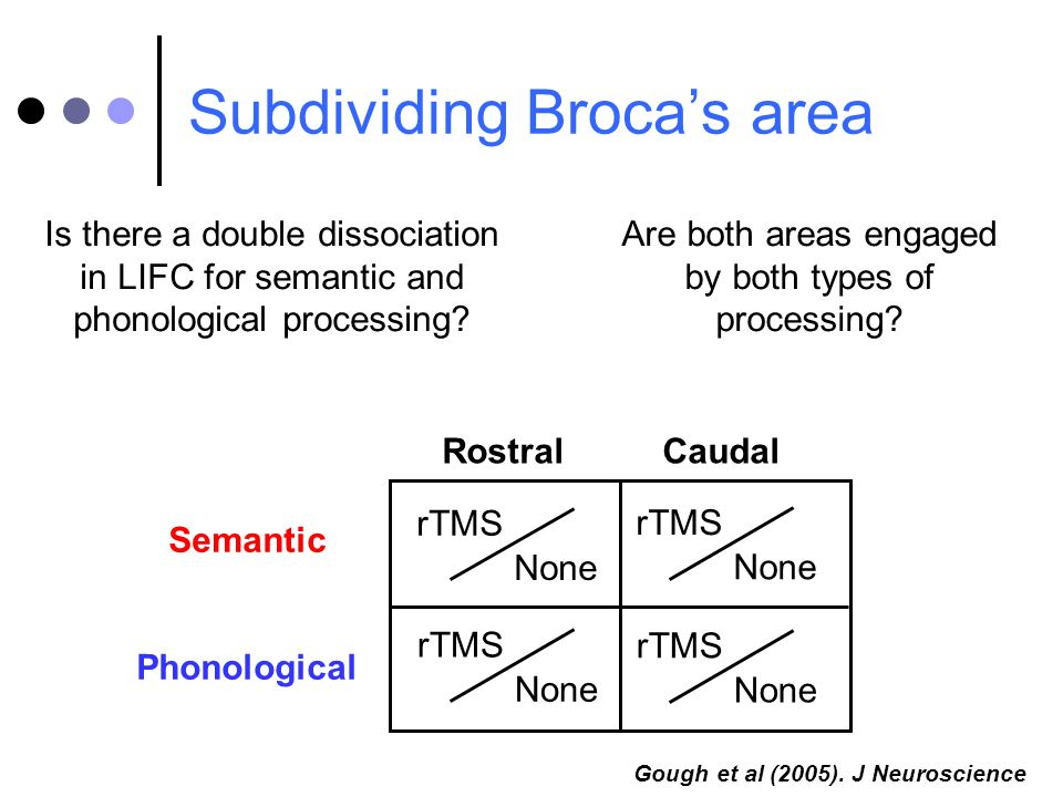 rTMS None Rostral Caudal Semantic Phonological Gough et al (2005). J Neuroscience rTMS None rTMS None rTMS None Subdividing Brocas area Is there a dou