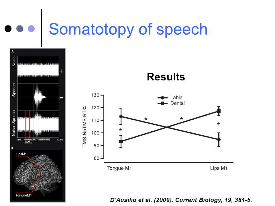 Somatotopy of speech Results DAusilio et al. (2009). Current Biology, 19, 381-5.