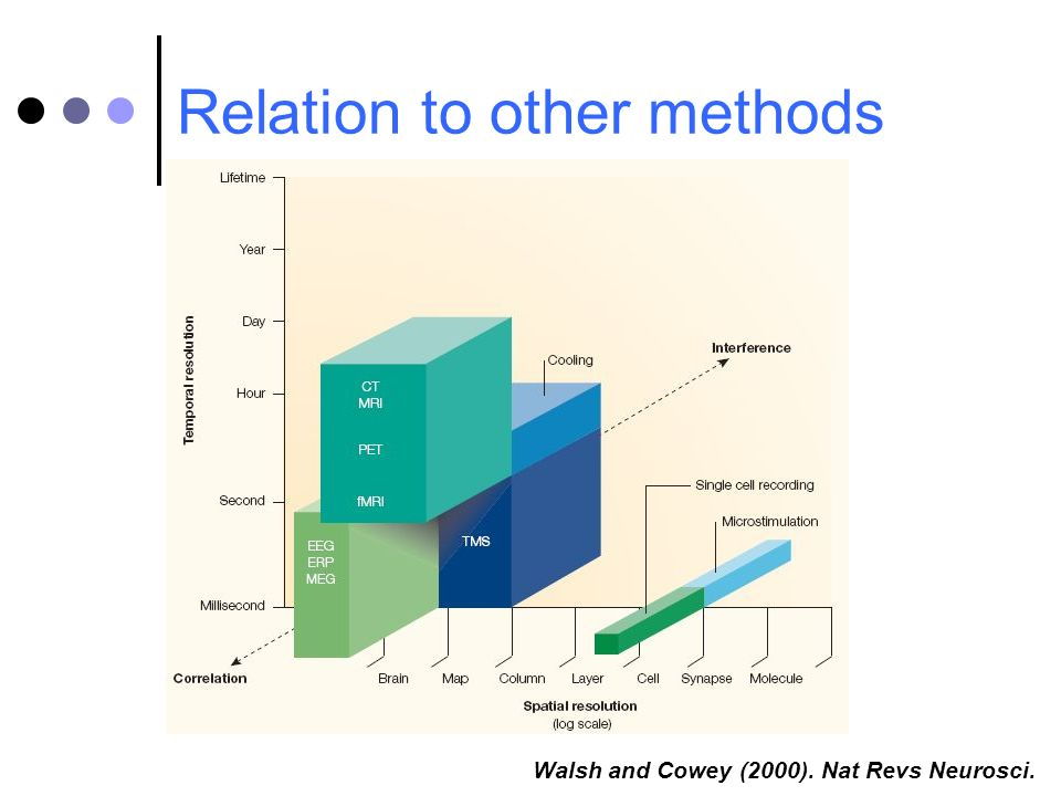 Relation to other methods Walsh and Cowey (2000). Nat Revs Neurosci.