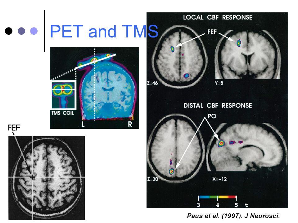 PET and TMS Paus et al. (1997). J Neurosci.