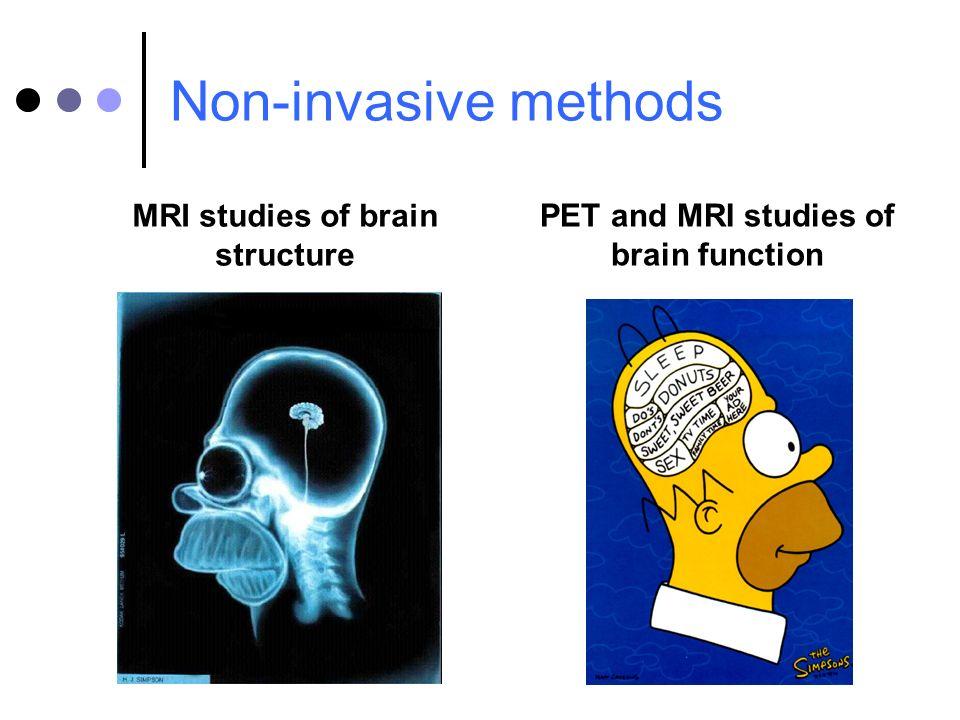 MRI studies of brain structure PET and MRI studies of brain function Non-invasive methods