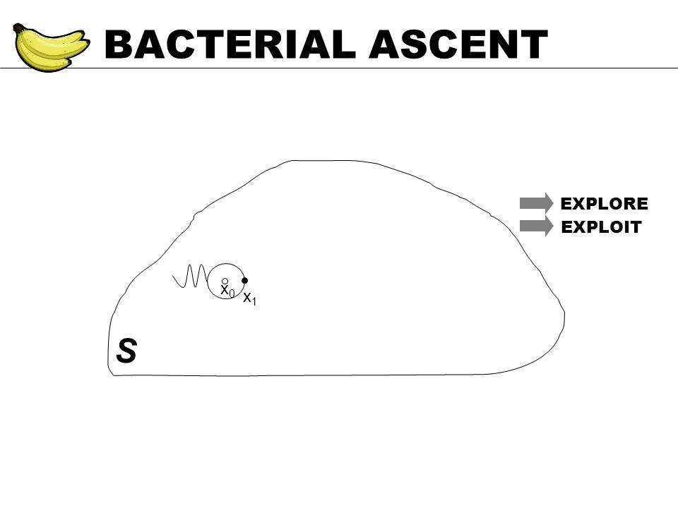 BACTERIAL ASCENT S EXPLORE EXPLOIT x0x0 x1x1
